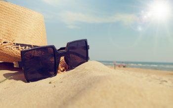 Der Sommer bei den Jusos
